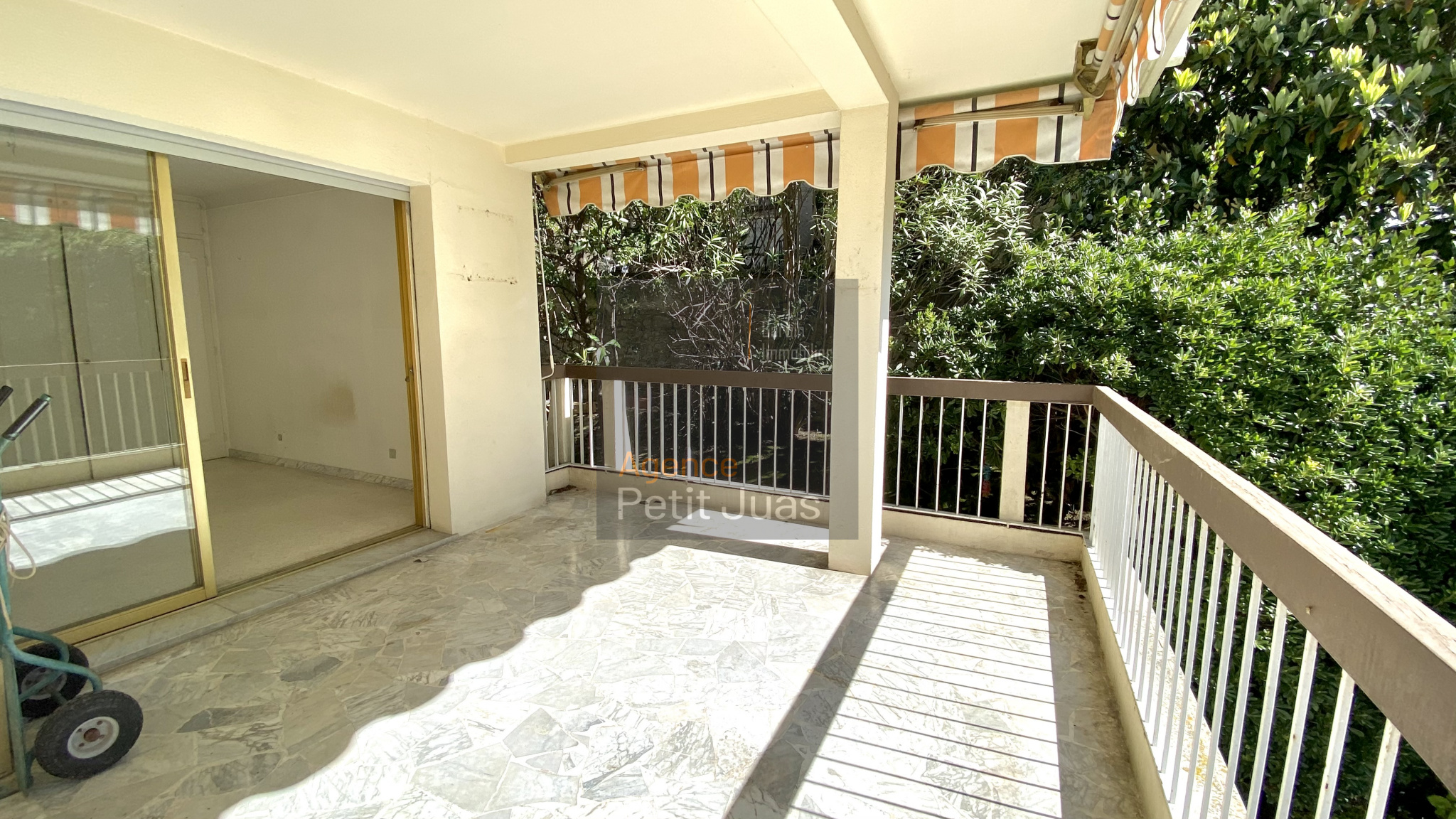 Image_1, Appartement, Cannes, ref :973