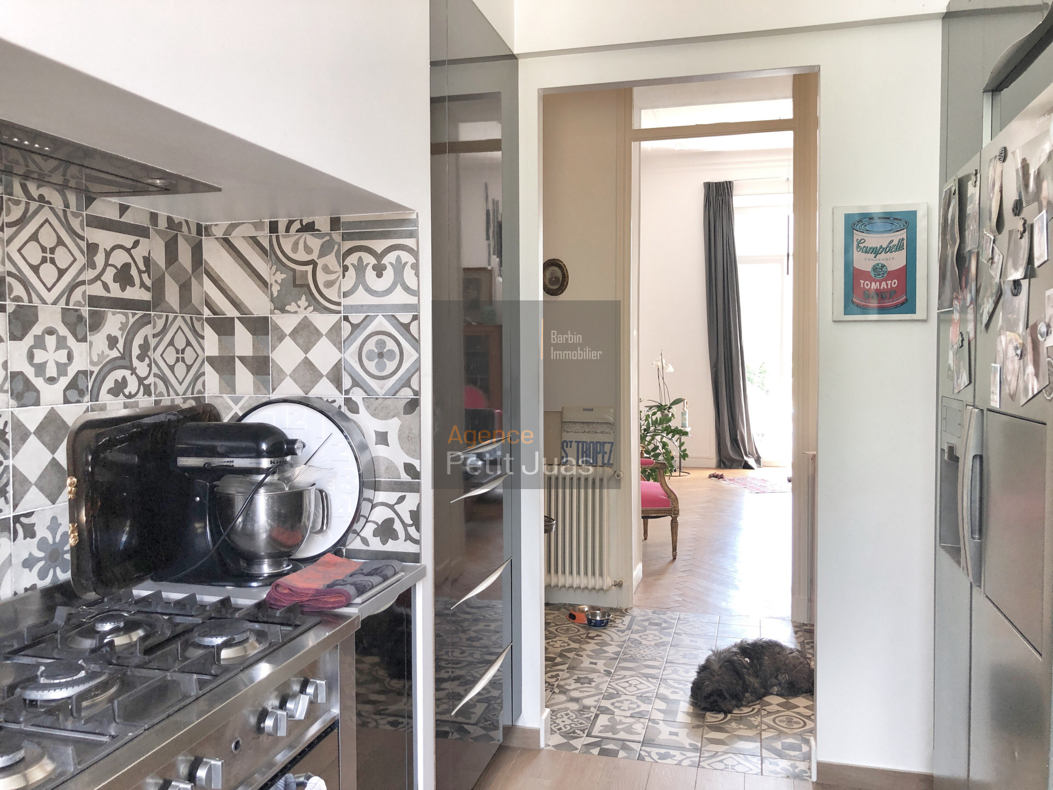 Image_7, Appartement, Cannes, ref :STV902